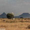 Karoo, flat-topped mountains