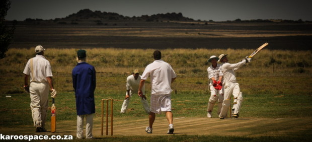 farm cricket