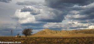 springfontein0001