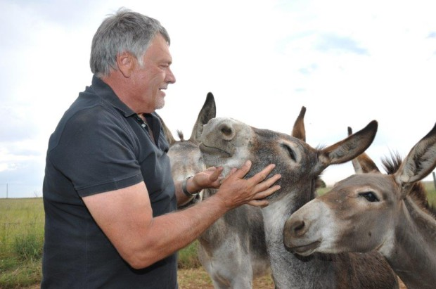 Prof Gerrit van Tonder's donkeys featured on his Facebook and Twitter profiles.