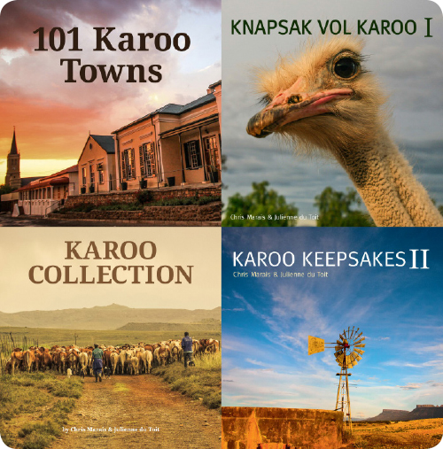 Karoo-Space-Collage-Rounded-500 (2)