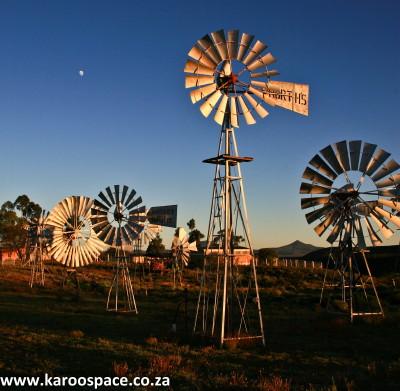 loeriesfontein windpumps, northern cape