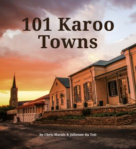 101Towns