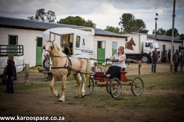 cradock agricultural show