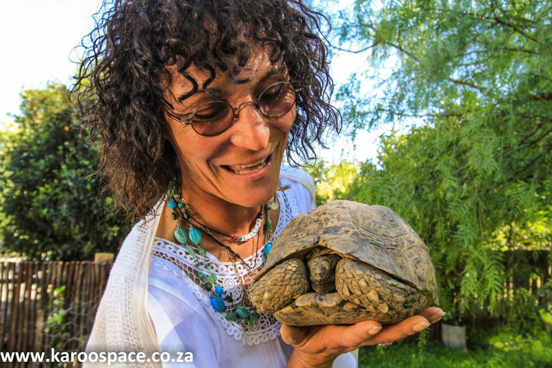 tortoise lady of the karoo
