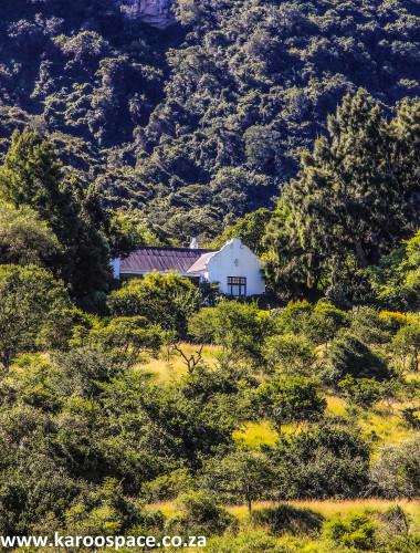 olivewoods farm, somerset east