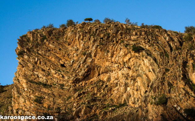 Cape Fold Mountains, tectonic pressure