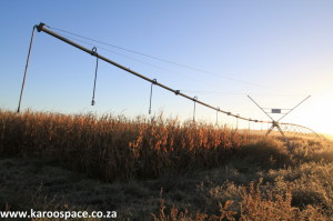 Water-efficient centre pivots are being used to grow top-grade lucerne and maize along the Fish and Sundays Rivers.