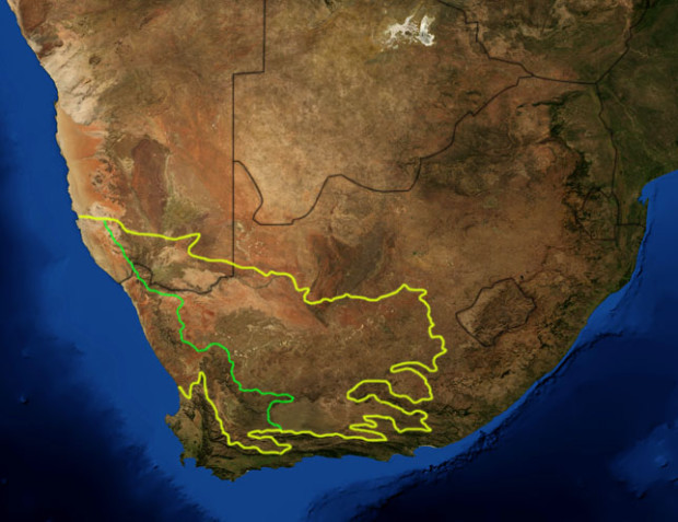 Another map. The Great Karoo (also called the Nama Karoo) outlined in yellow; the succulent Karoo in green.