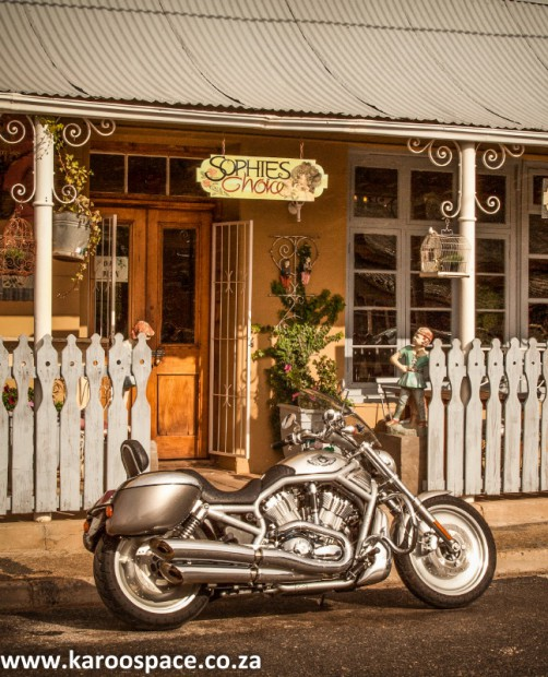 Sophie's Choice in Willowmore, Karoo