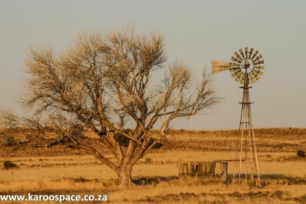 karoo drought