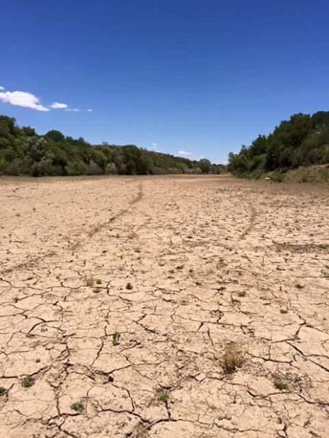 South African drought