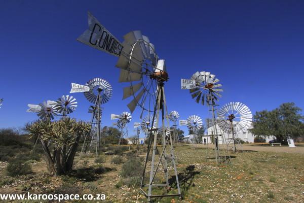 loeriesfontein, northern cape